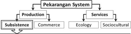 Benefits from Pekarangan